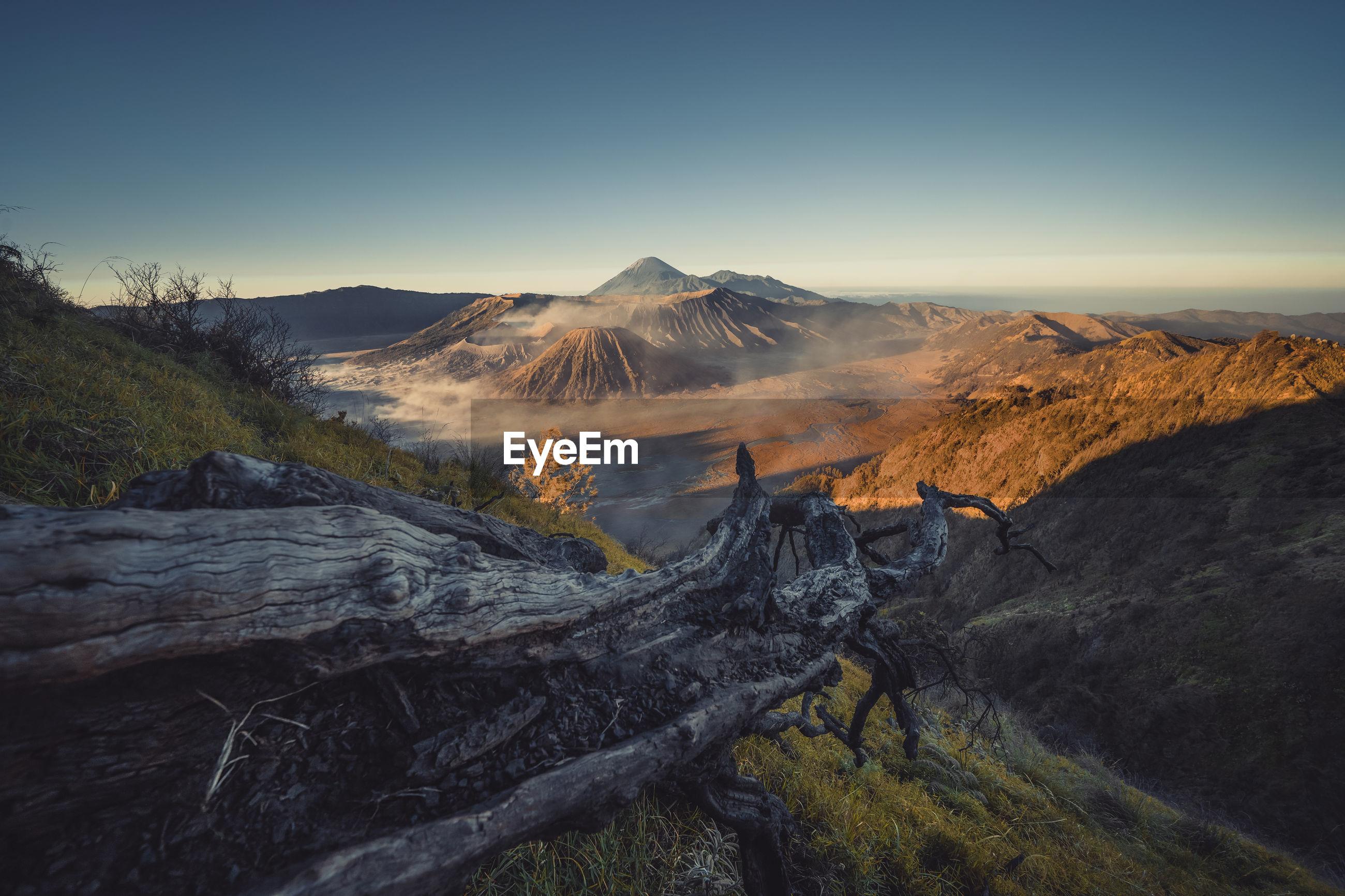 Fallen tree trunk on mountain against sky
