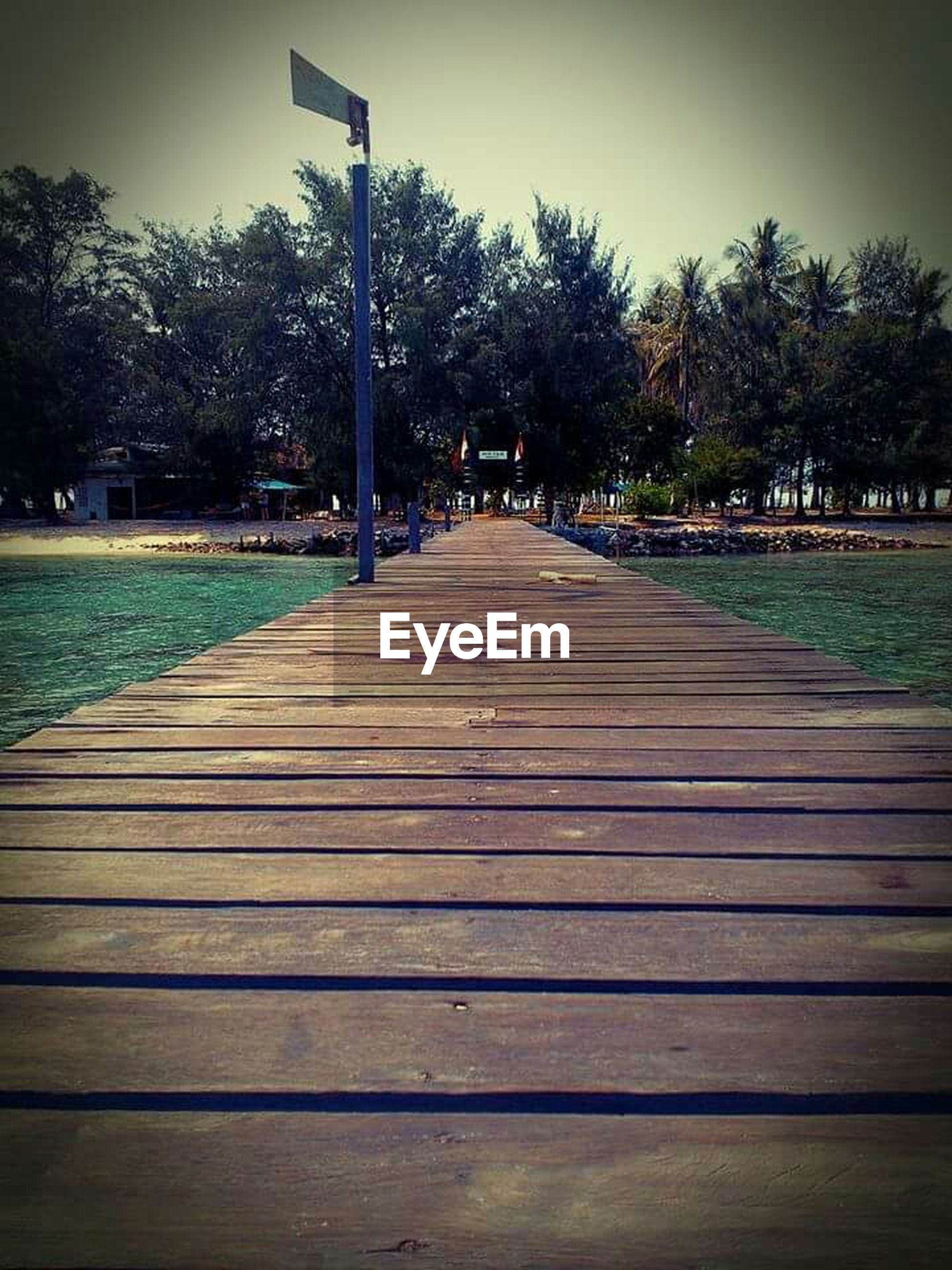 tree, the way forward, railing, wood - material, boardwalk, park - man made space, pier, sky, tranquility, bench, diminishing perspective, footpath, outdoors, built structure, wooden, empty, nature, street light, wood, shadow