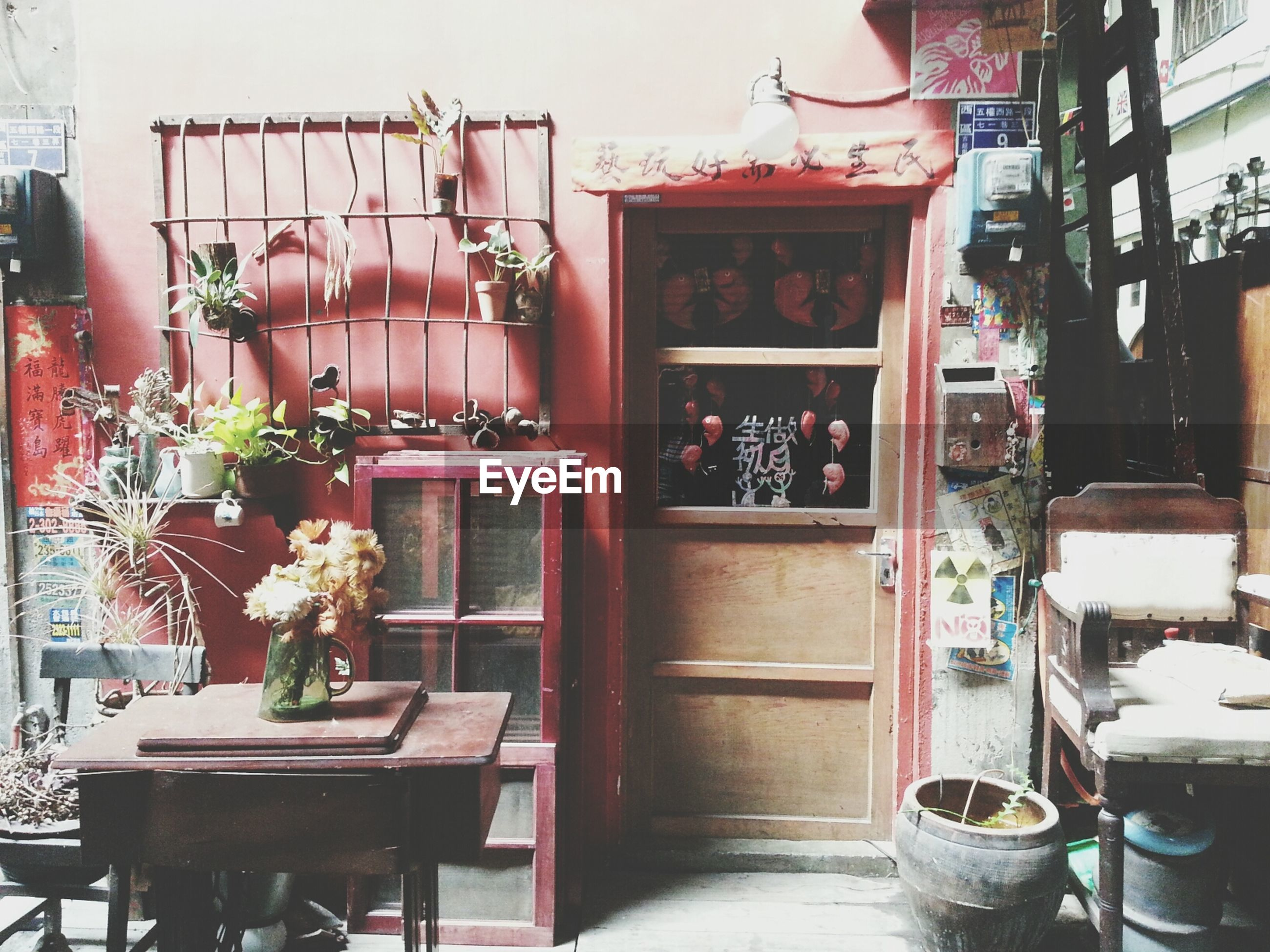 potted plant, architecture, built structure, building exterior, house, window, flower, indoors, table, decoration, door, vase, home interior, chair, plant, flower pot, art and craft, entrance, wood - material, day