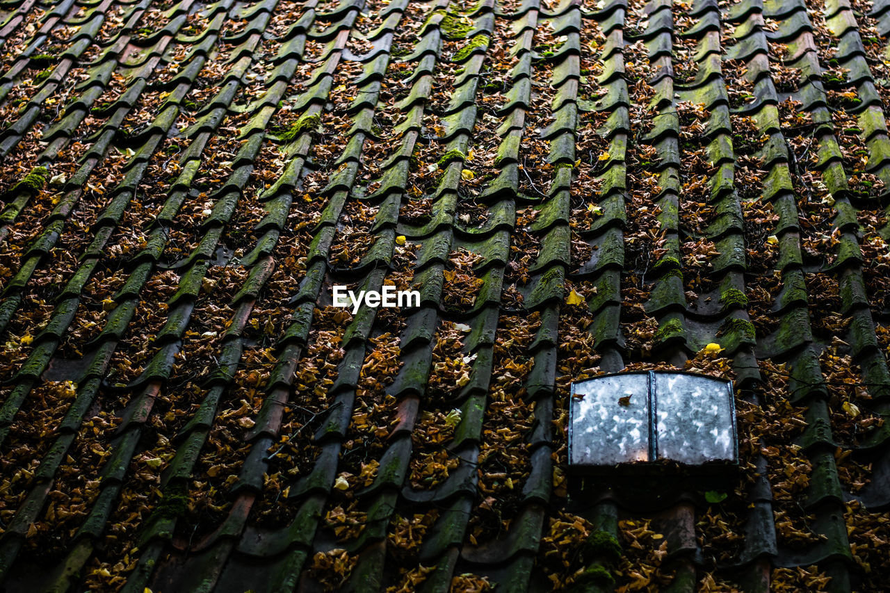 Full Frame Shot Of Weathered Roof Tiles