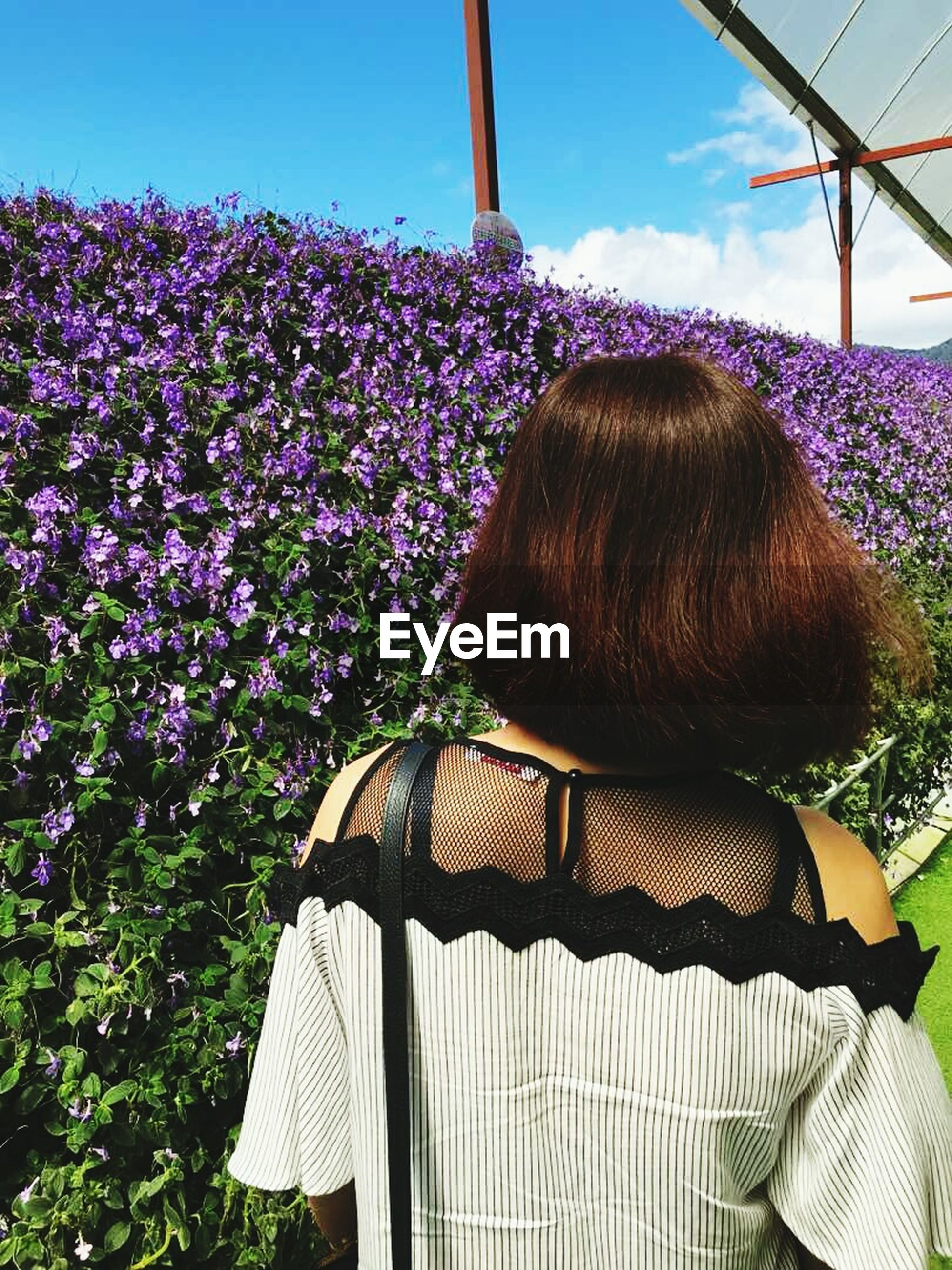 rear view, real people, flower, day, casual clothing, leisure activity, growth, one person, outdoors, nature, standing, beauty in nature, sky, freshness