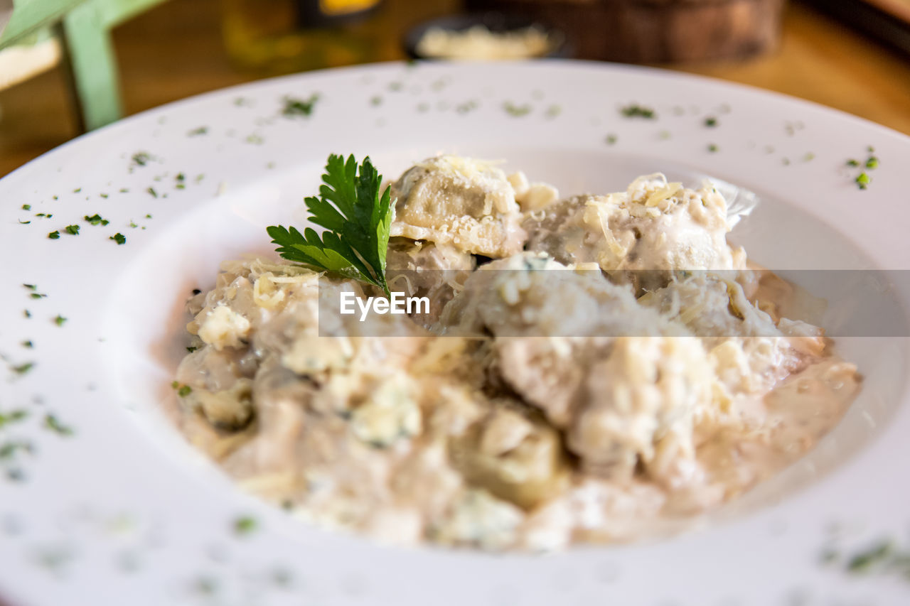 food and drink, food, plate, freshness, ready-to-eat, wellbeing, healthy eating, selective focus, serving size, close-up, indoors, still life, meal, table, herb, no people, garnish, italian food, white color, indulgence, dinner, temptation, crockery, greek food