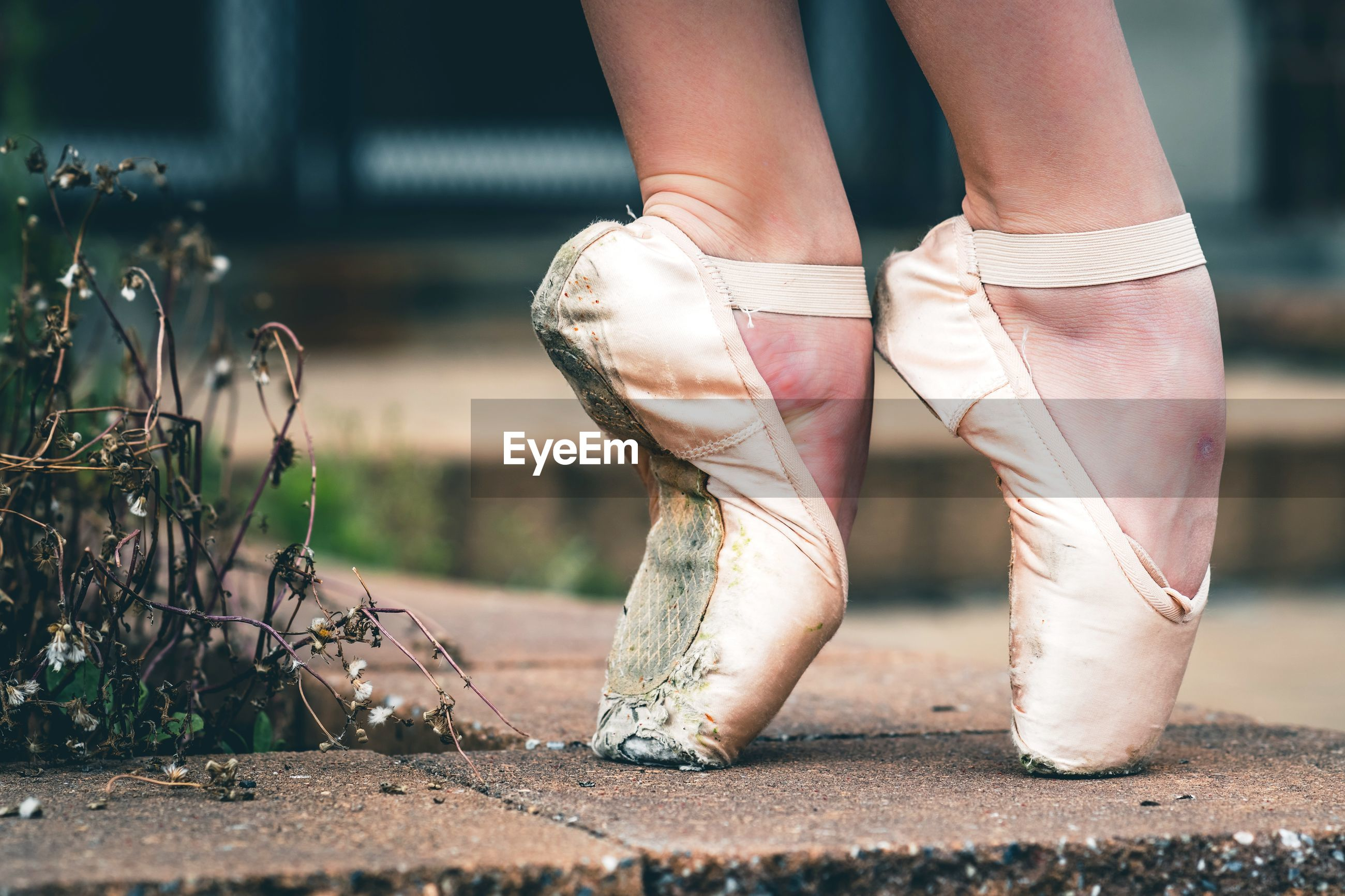 Low section of ballet dancer tiptoeing on footpath