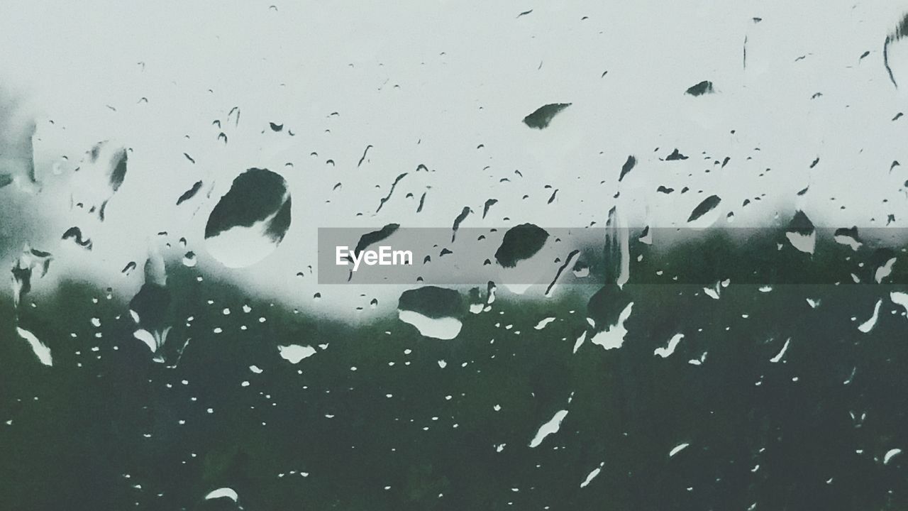 drop, water, window, wet, no people, weather, raindrop, backgrounds, close-up, nature, indoors, underwater, day, animal themes, swimming, undersea