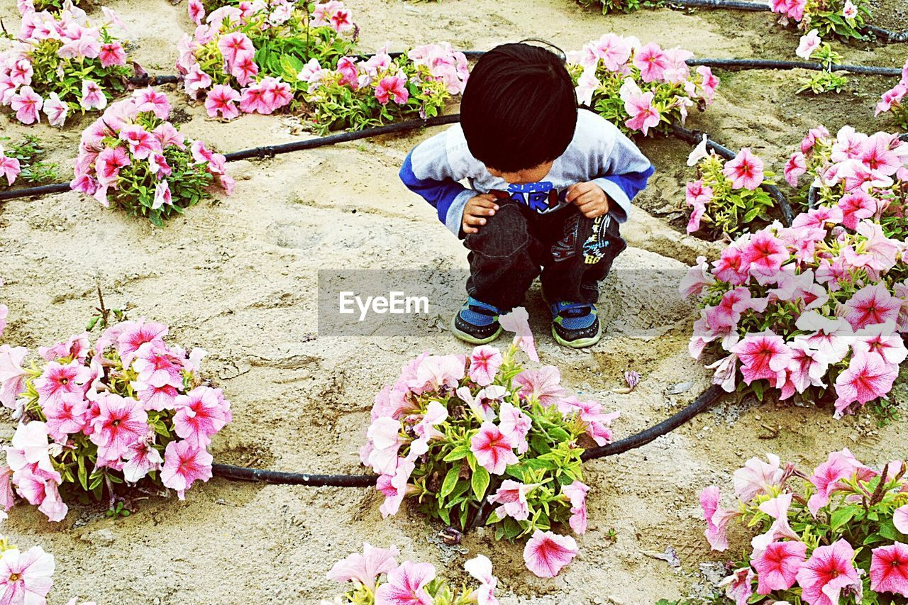flower, full length, one person, fragility, crouching, plant, outdoors, child, bouquet, day, nature, springtime, real people, florist, sitting, childhood, growth, flowerbed, beauty in nature, flower head, people, flower shop, children only, adult, one boy only, freshness