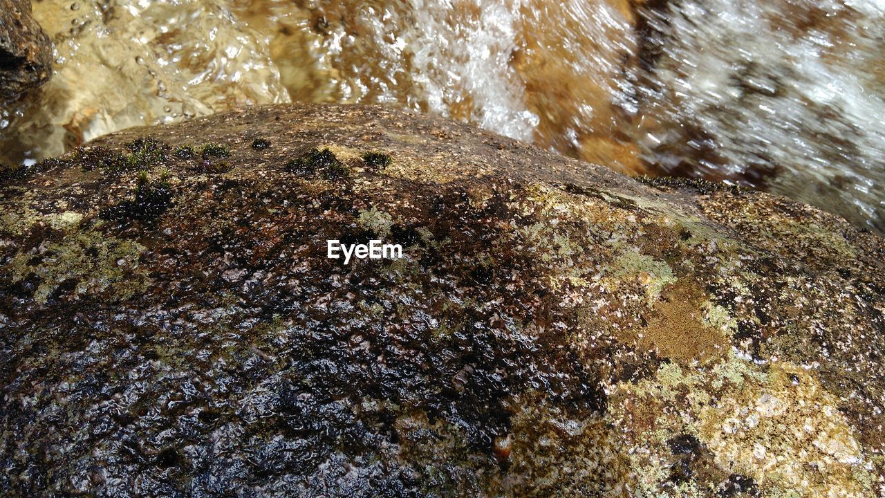 water, rock - object, nature, motion, no people, underwater, sea, day, beauty in nature, undersea, outdoors, close-up, animal themes