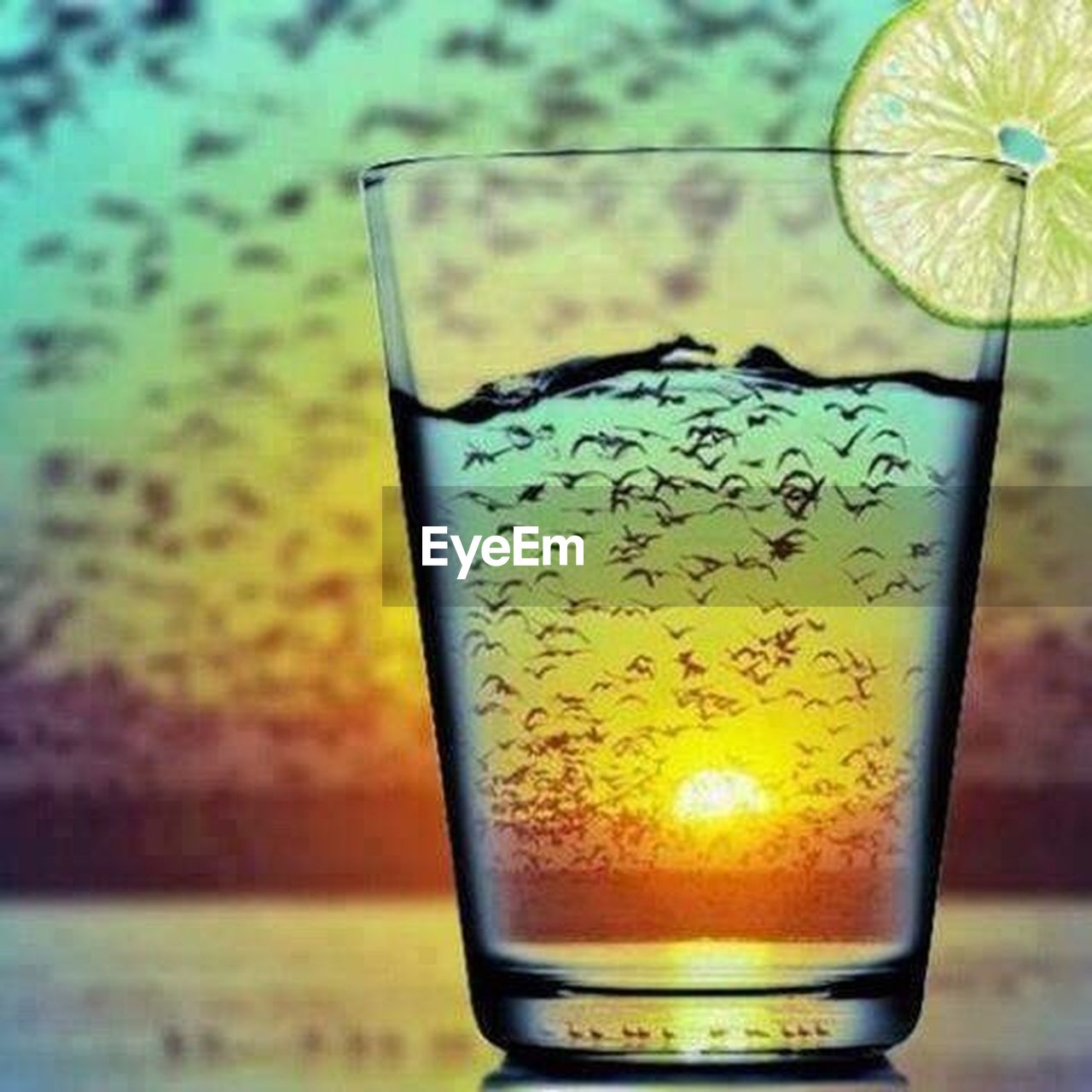 drinking glass, drink, alcohol, close-up, no people, indoors, day