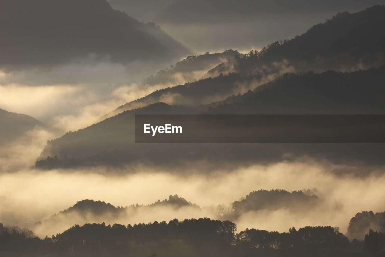 Scenic View Of Cloudscape Over Forest