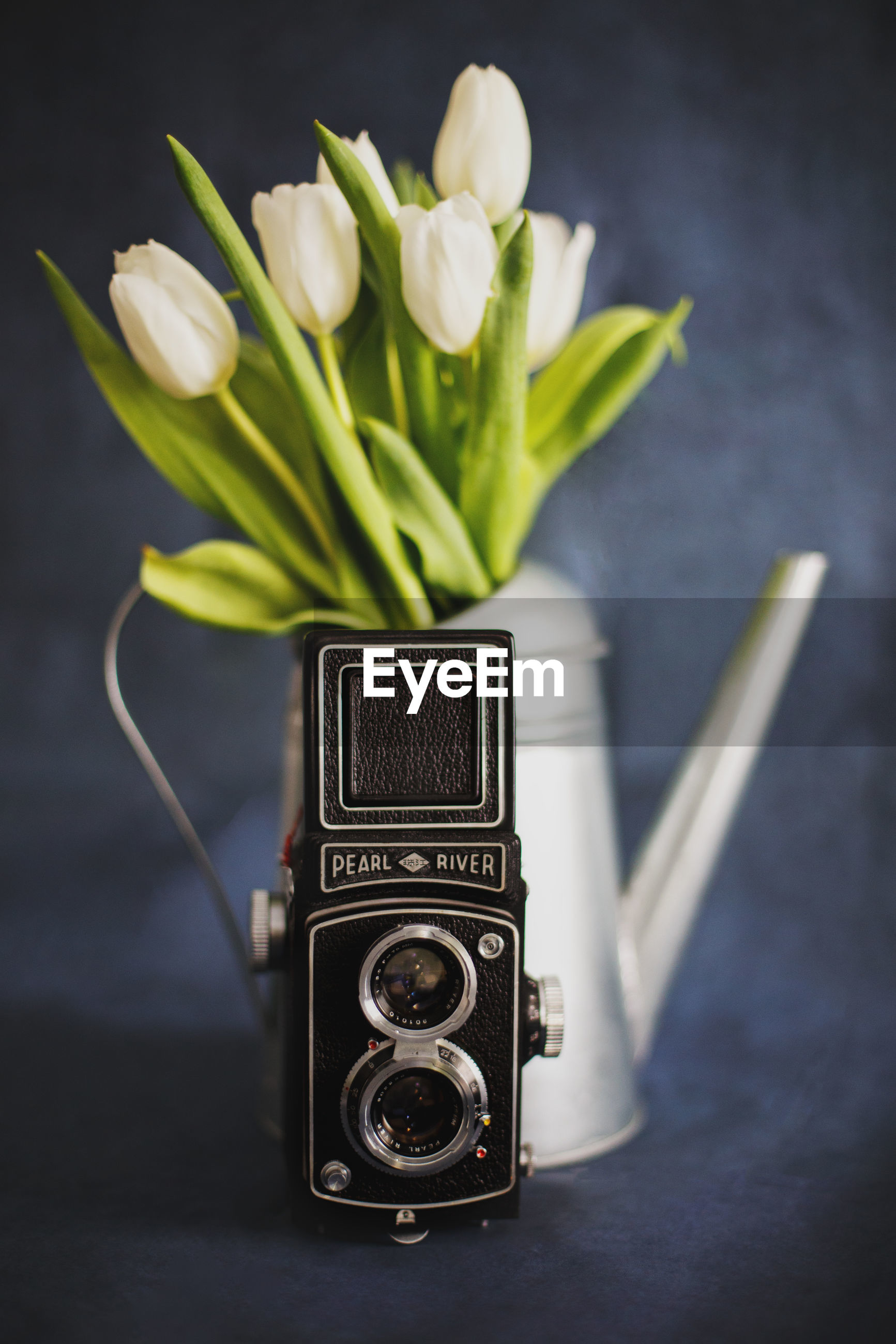 Close-up of camera with flowers in watering can on table