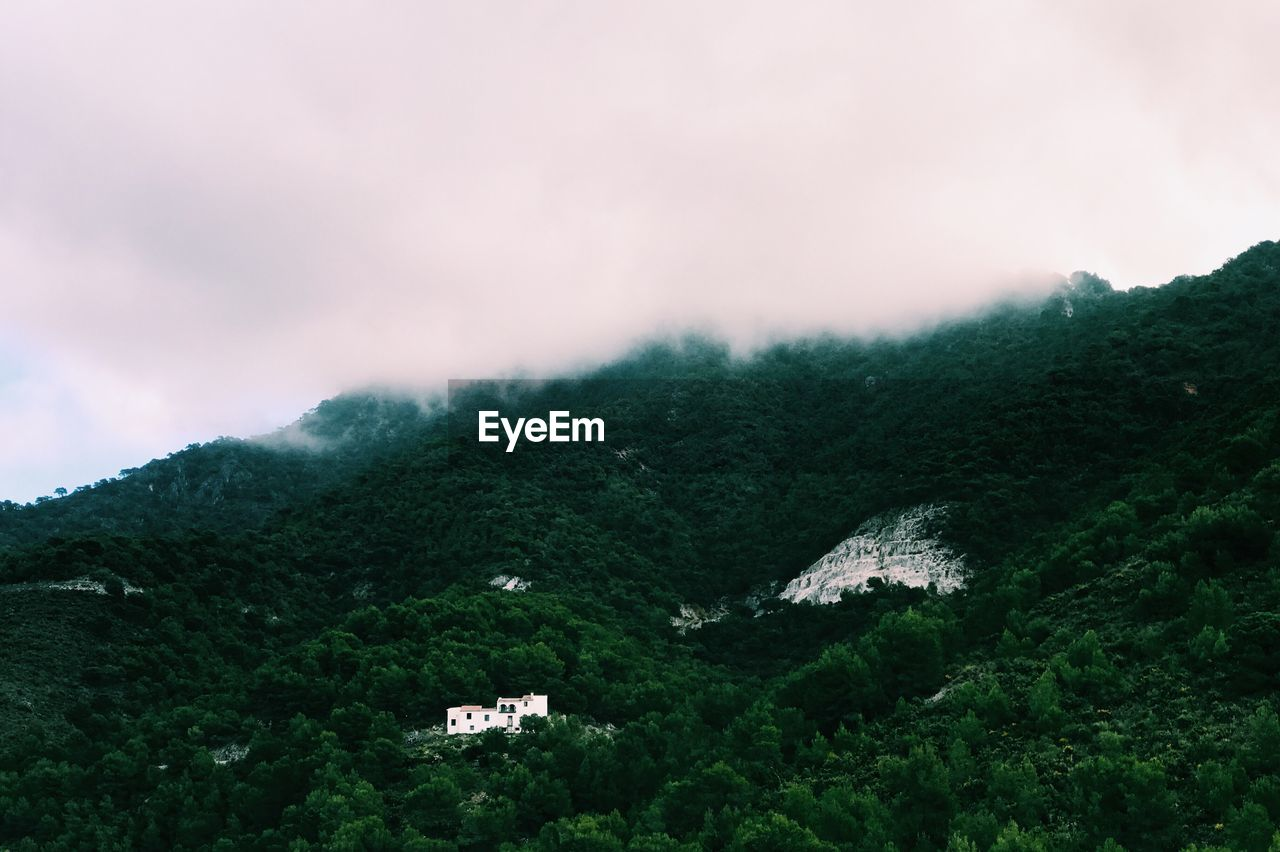 nature, mountain, no people, scenics, day, beauty in nature, outdoors, sky, tranquility, tranquil scene, landscape, tree
