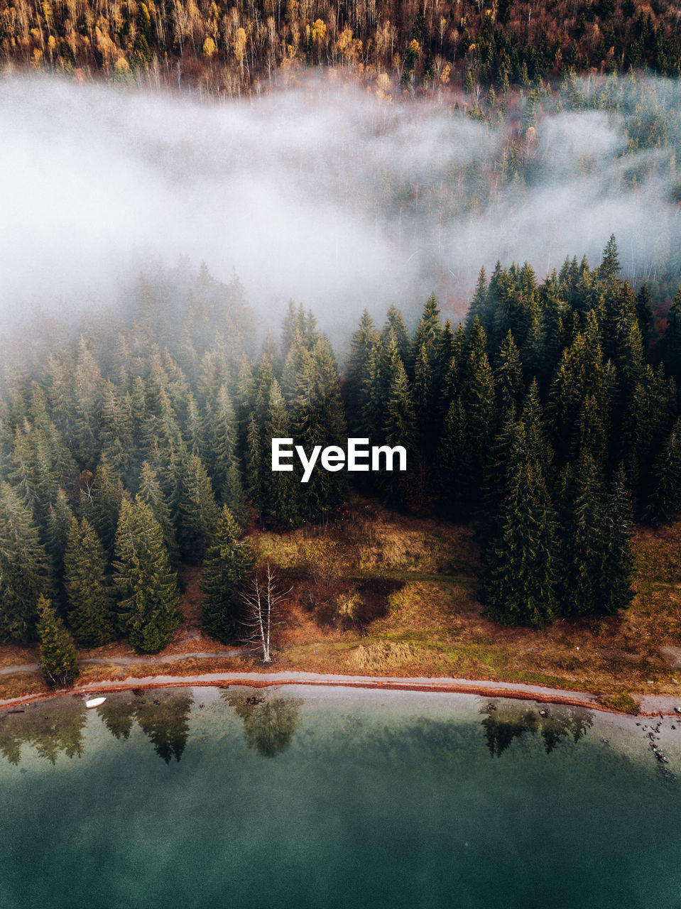 Aerial View Of Lake And Forest During Foggy Weather