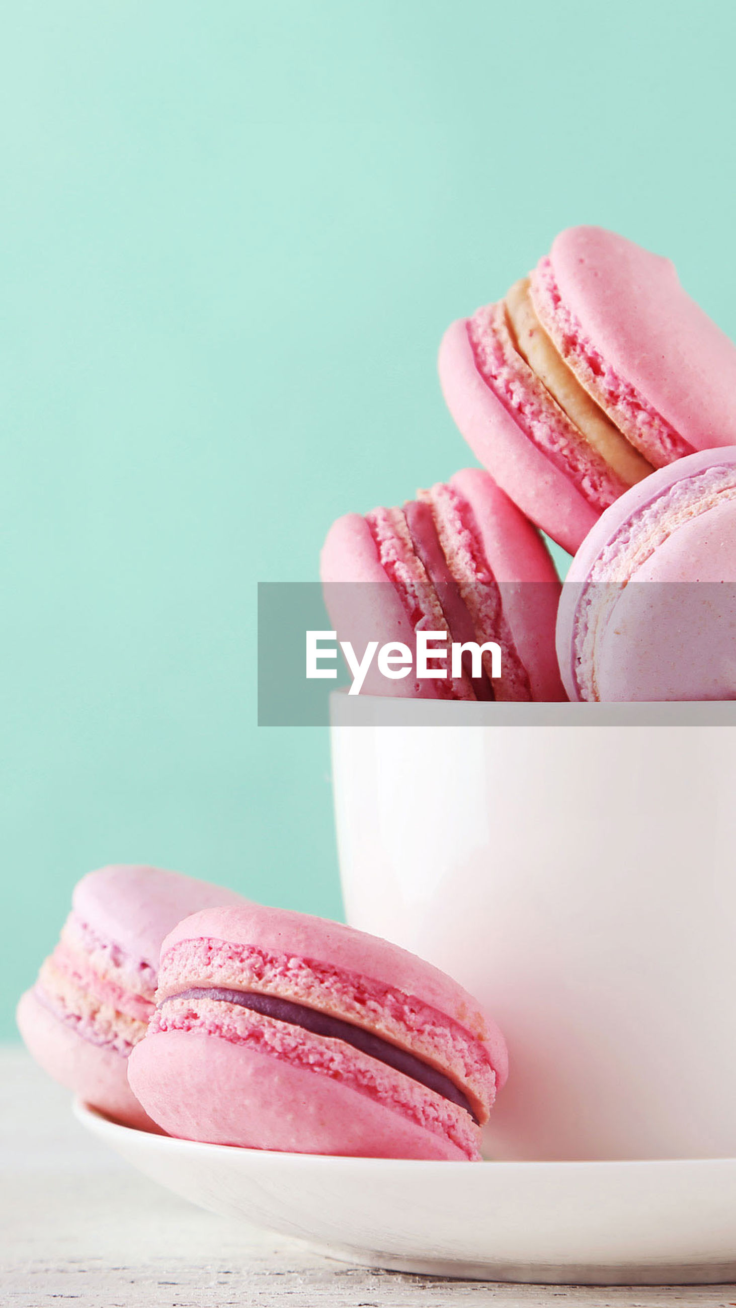 pink color, studio shot, sweet food, blue background, colored background, macaroon, close-up, food and drink, food, no people, ice cream, freshness