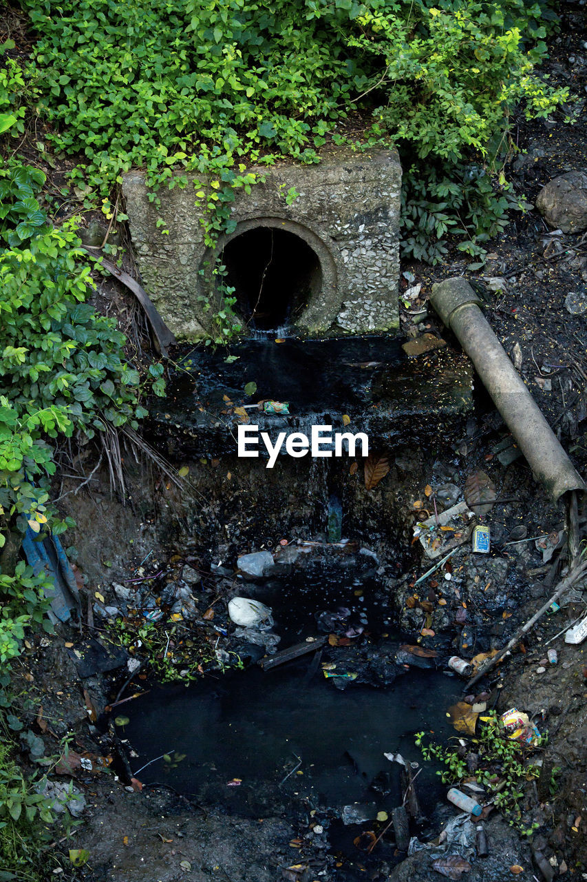 water, sewer, sewage, pipe - tube, arch, day, bridge - man made structure, plant, growth, outdoors, gutter, no people, architecture, nature, leaf, water pipe