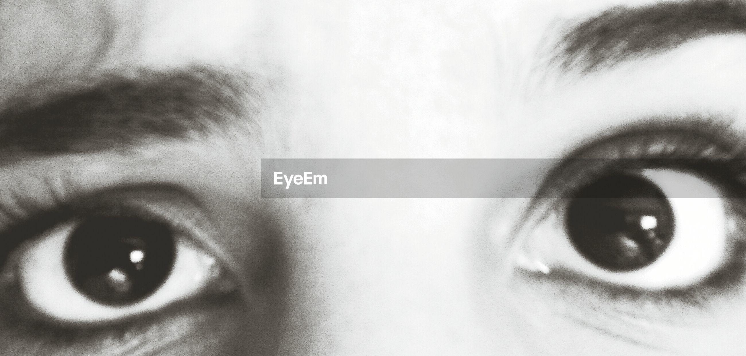 human eye, close-up, looking at camera, portrait, eyelash, part of, eyesight, indoors, sensory perception, human face, extreme close-up, headshot, extreme close up, staring, full frame, detail, eyeball