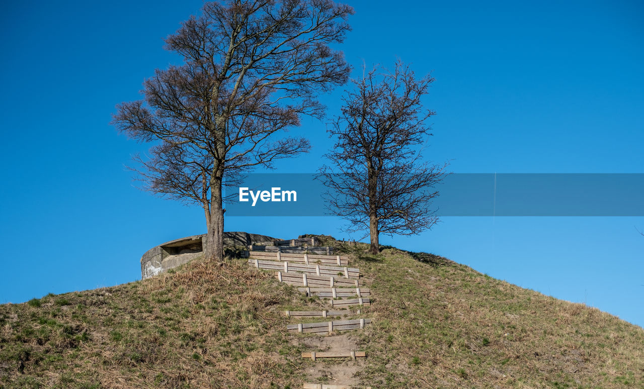 sky, tree, blue, architecture, plant, built structure, nature, history, clear sky, low angle view, the past, day, bare tree, no people, wall, mountain, ancient, beauty in nature, building exterior, old, outdoors, ancient civilization