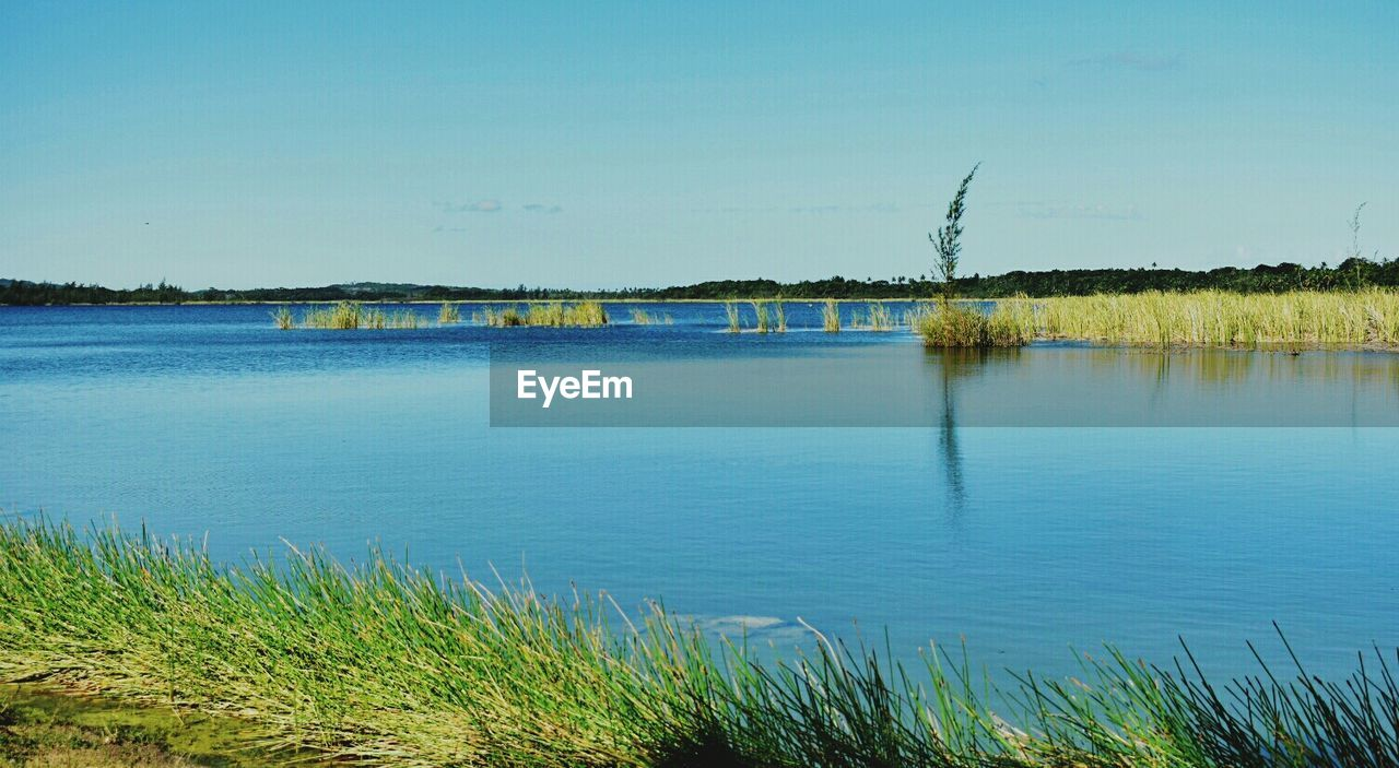 lake, water, nature, outdoors, grass, tranquil scene, tranquility, scenics, no people, day, beauty in nature, sky
