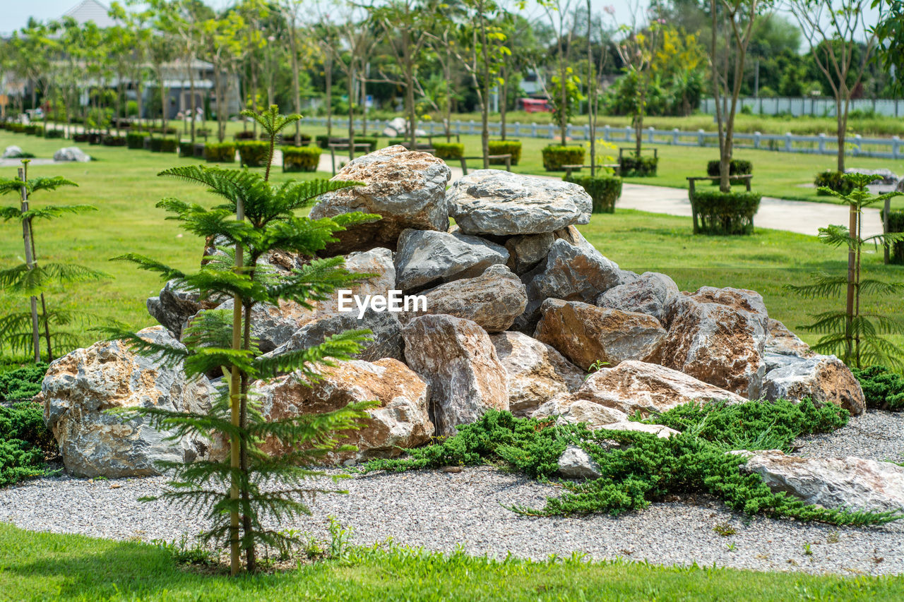 High angle view of rocks in garden