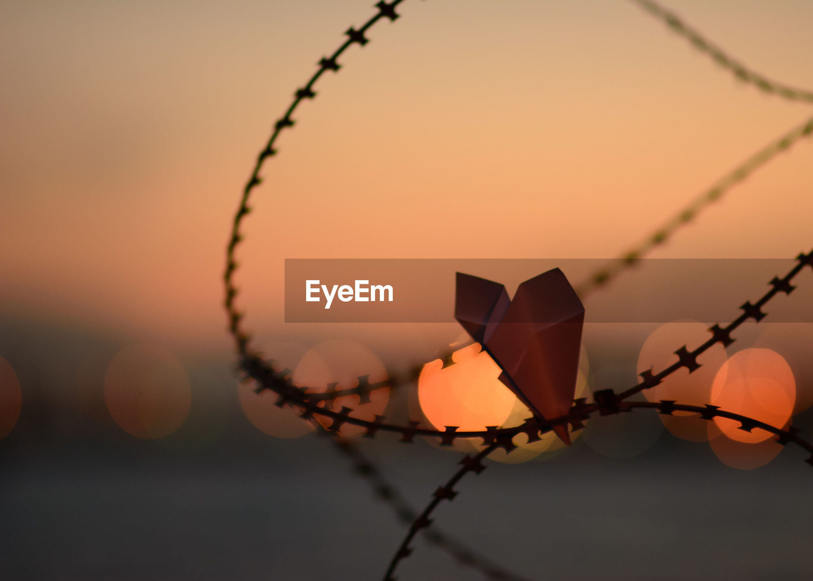 Close-up of paper airplane in barbed wire against sky during sunset