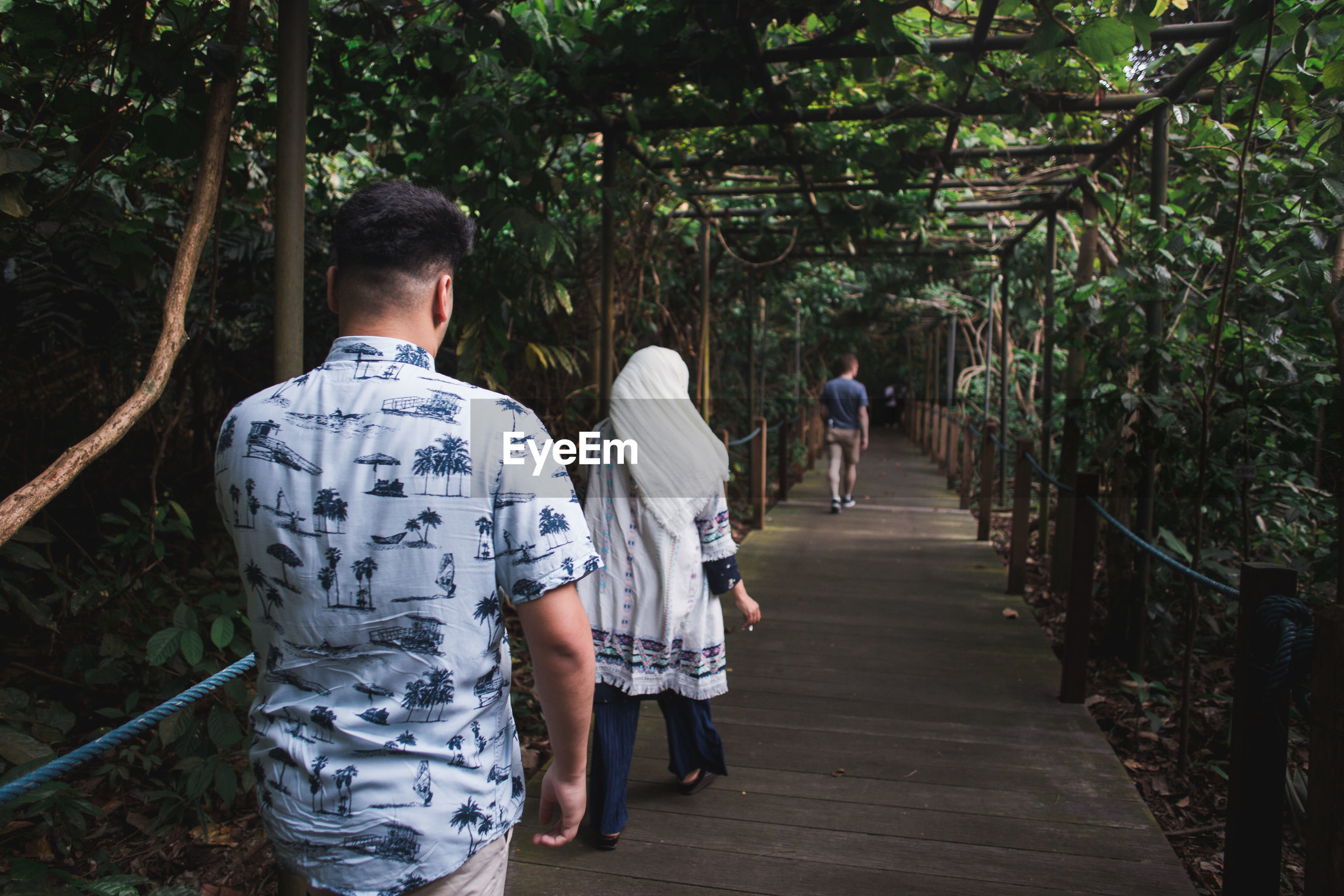REAR VIEW OF PEOPLE WALKING ON FOOTPATH AMIDST TREES IN FOREST