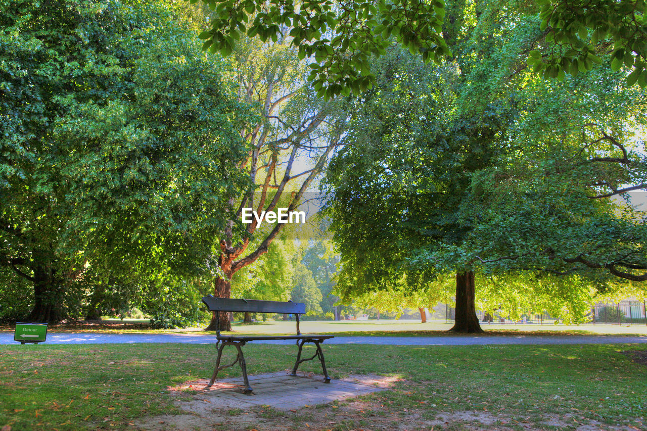 Empty bench on grassy field against trees