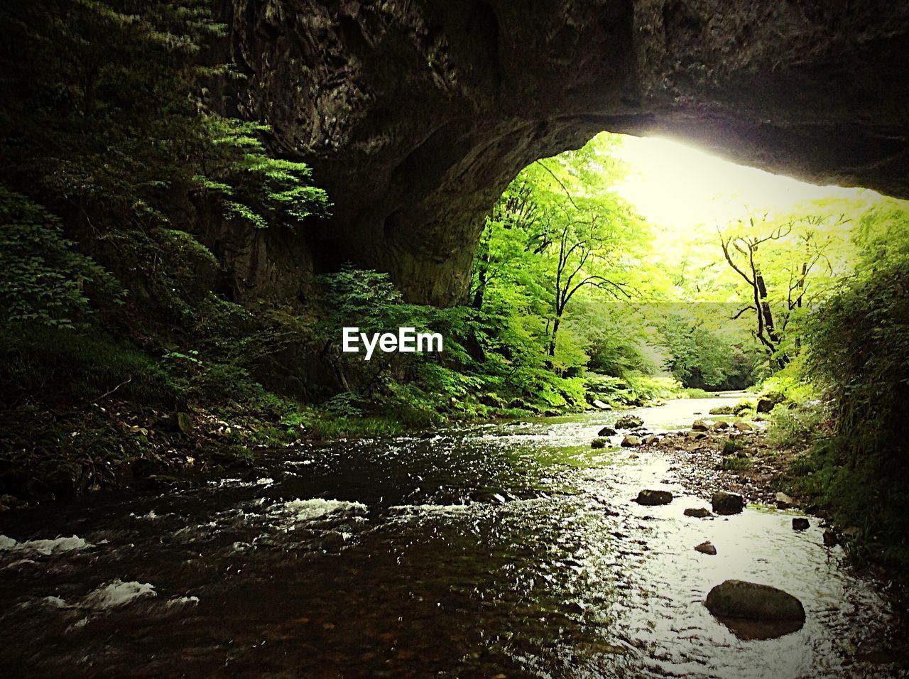 tranquility, nature, rock - object, beauty in nature, scenics, no people, forest, day, landscape, tree, tranquil scene, river, cave, travel destinations, outdoors, water