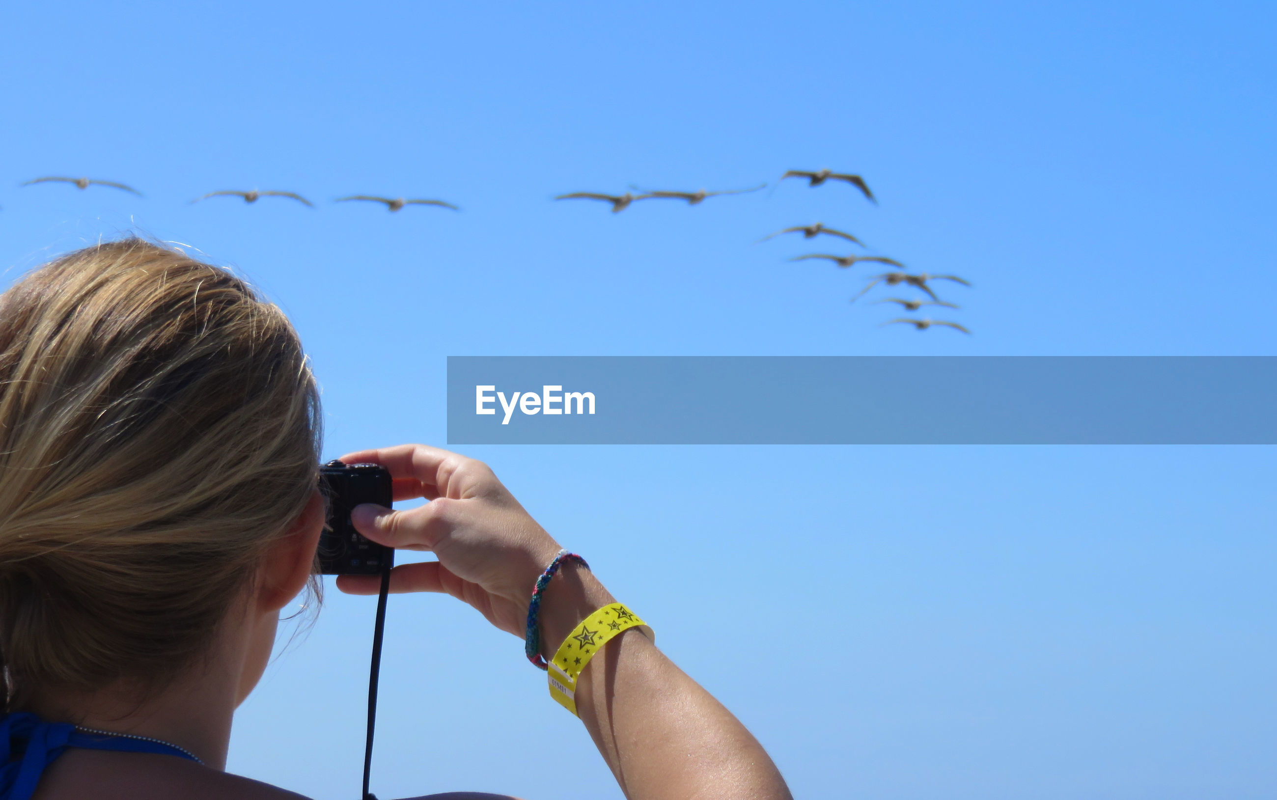 Low angle view of woman photographing birds flying against clear blue sky