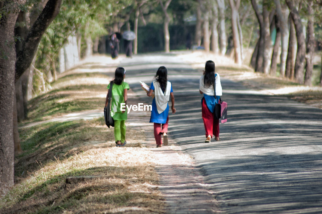 Rear view of female friends walking on road amidst trees