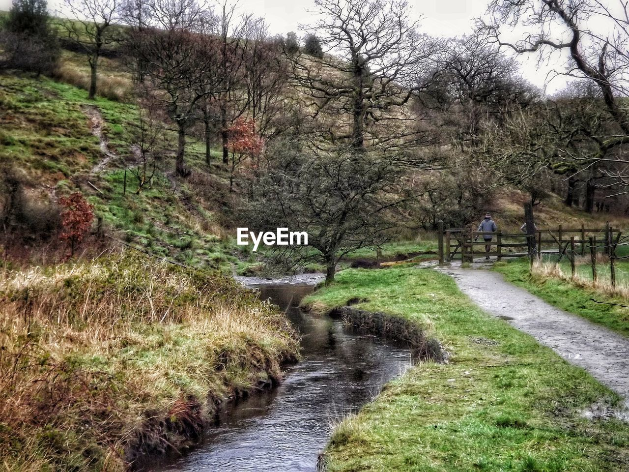 Stream Amidst Hill And Walkway Against Bare Trees