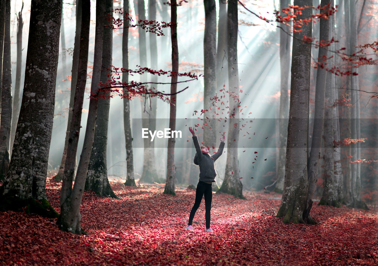 Girl Throwing Dry Red Autumn Leaves In Forest