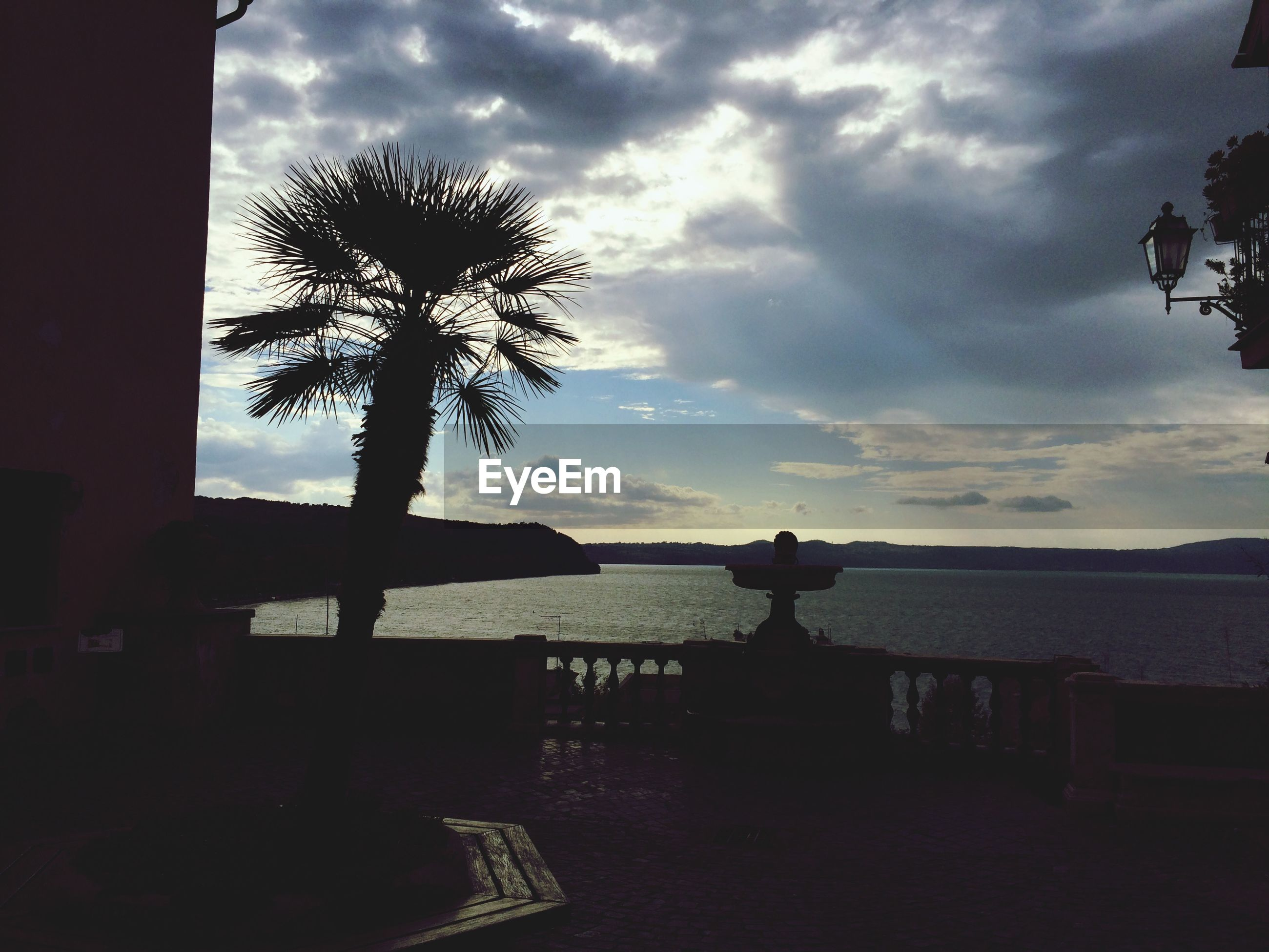 Silhouette date palm tree on balcony against cloudy sky at dusk