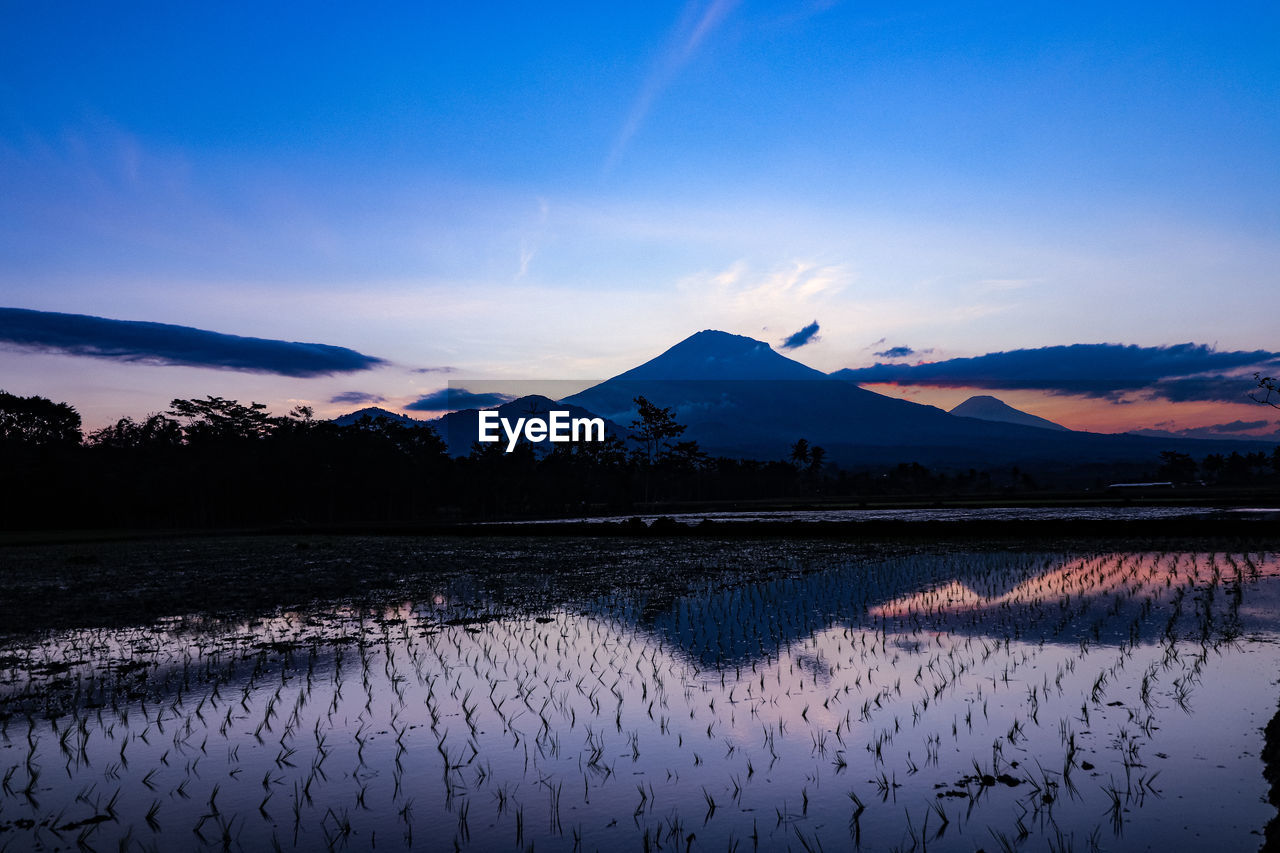 sky, scenics - nature, tranquility, tranquil scene, water, beauty in nature, mountain, cloud - sky, sunset, nature, reflection, plant, landscape, lake, no people, non-urban scene, rural scene, idyllic, environment, mountain range, outdoors, snowcapped mountain