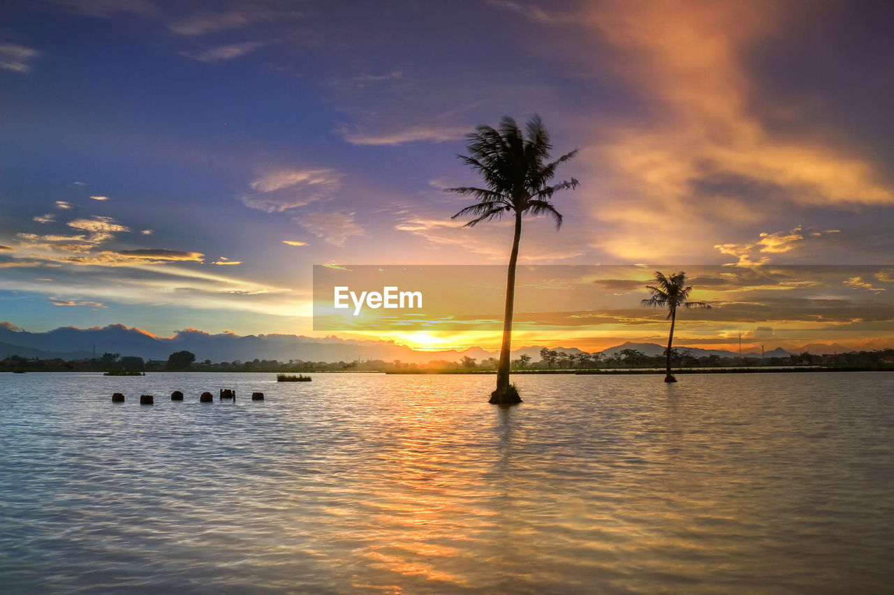water, sky, cloud - sky, sunset, beauty in nature, scenics - nature, tree, tranquil scene, waterfront, tranquility, reflection, nature, silhouette, palm tree, plant, orange color, tropical climate, sea, no people, outdoors, swimming pool