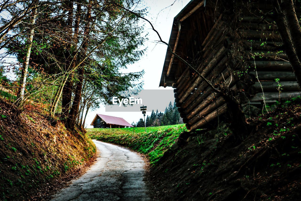 plant, tree, direction, the way forward, architecture, built structure, building exterior, nature, no people, day, road, land, footpath, house, building, sky, growth, tranquility, green color, field, outdoors, diminishing perspective