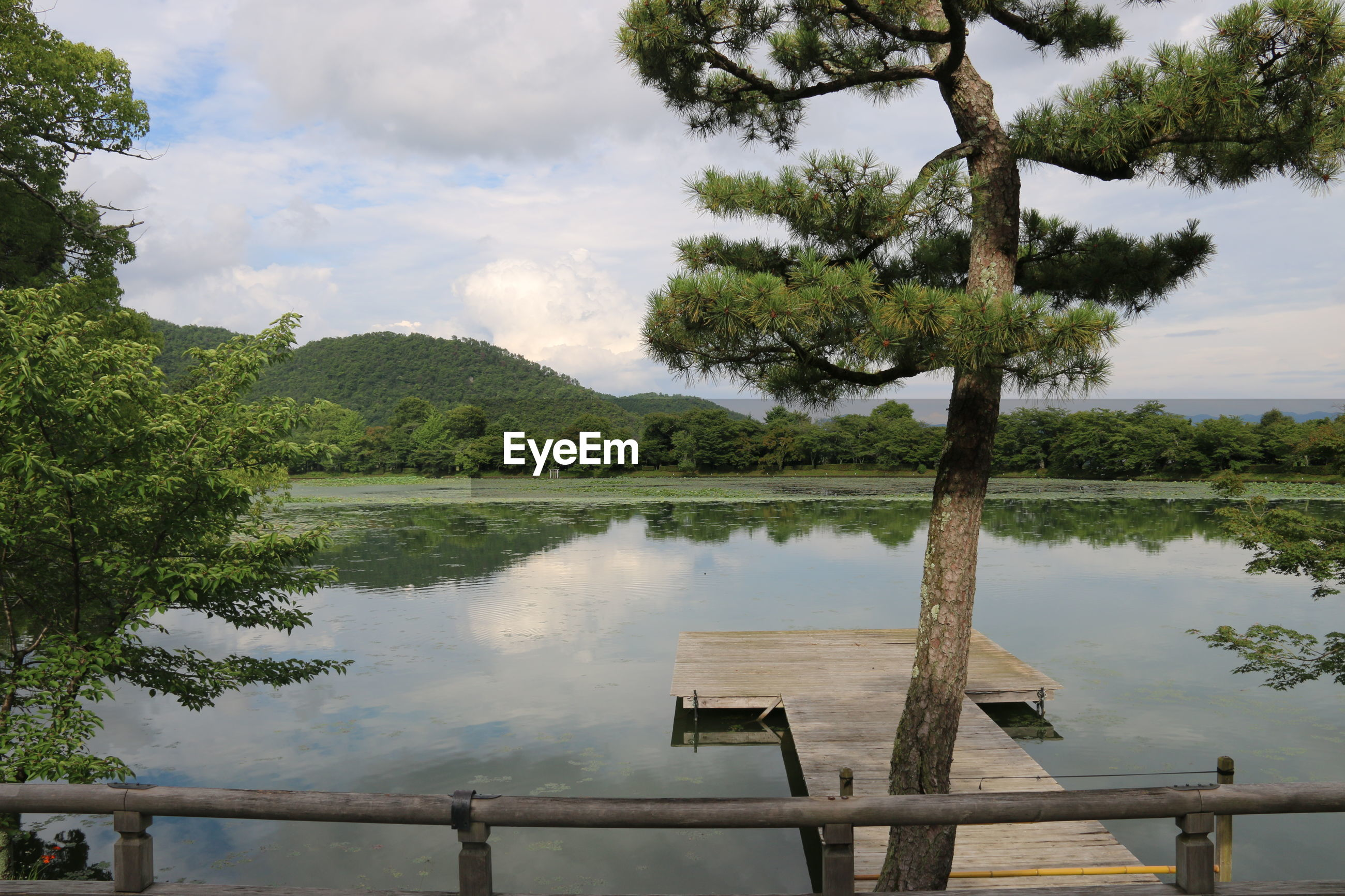 Lake with jetty and trees against cloudy sky