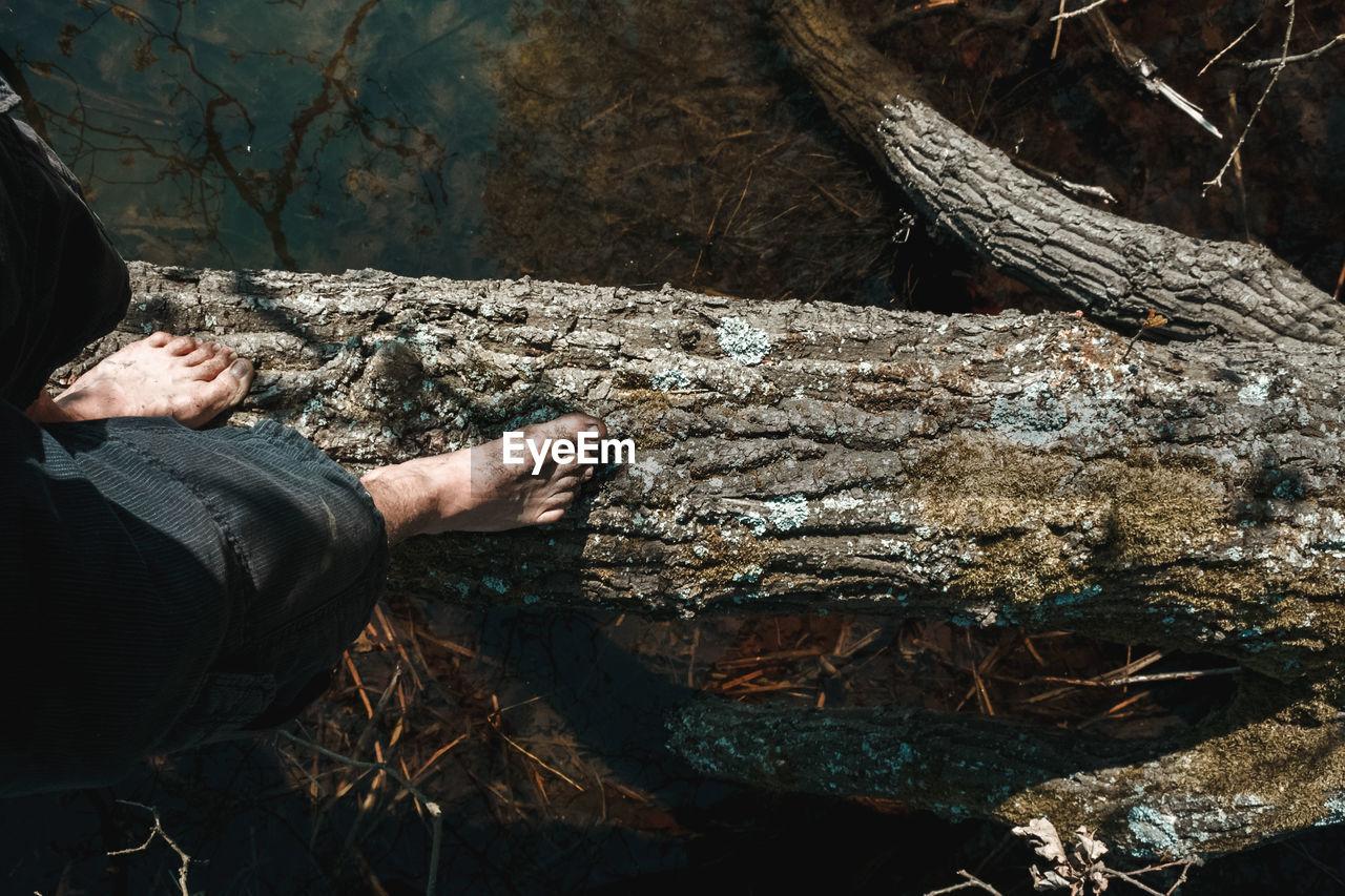 Low section of man walking on log