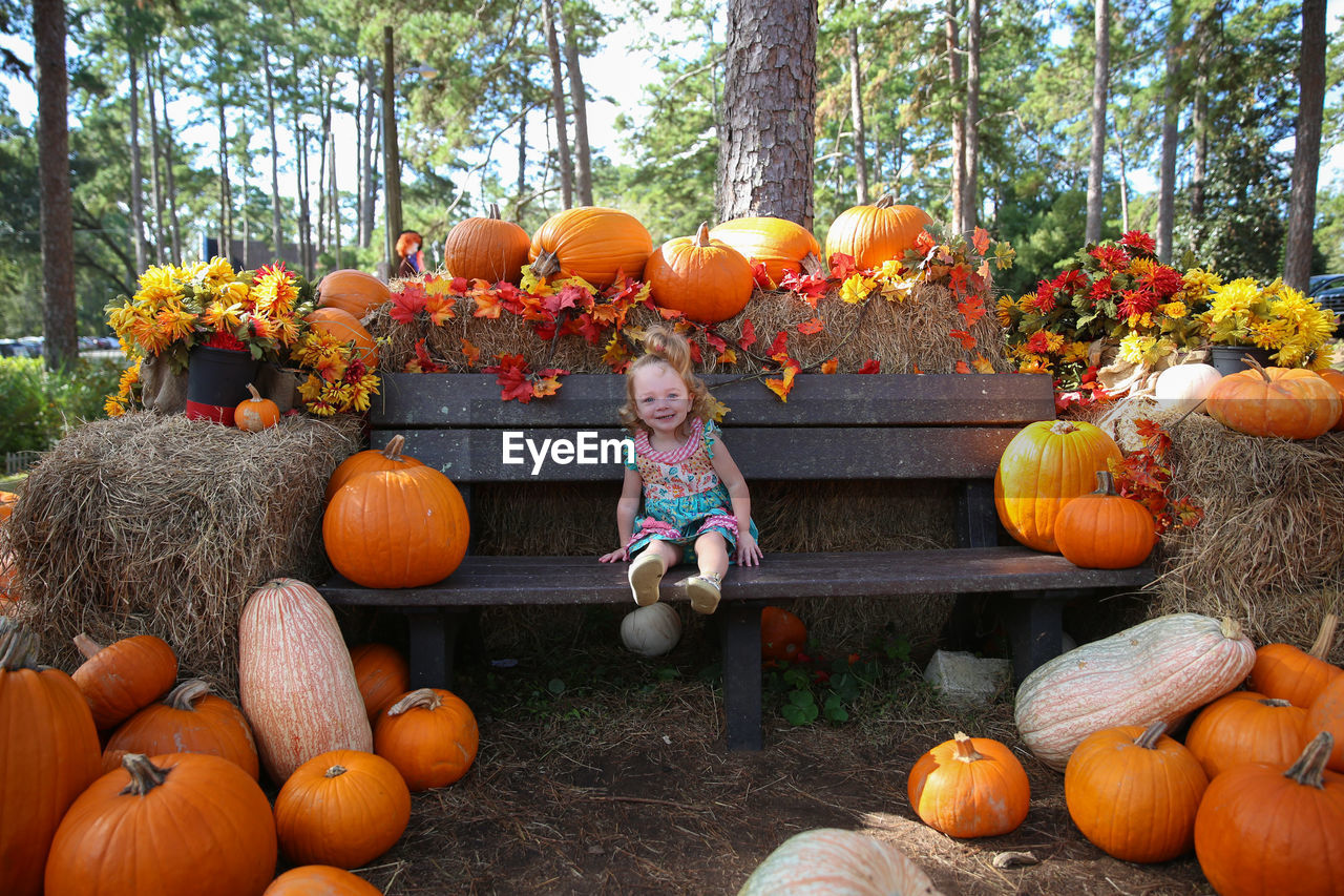 Girl Sitting On Bench Amidst Pumpkins At Park During Autumn