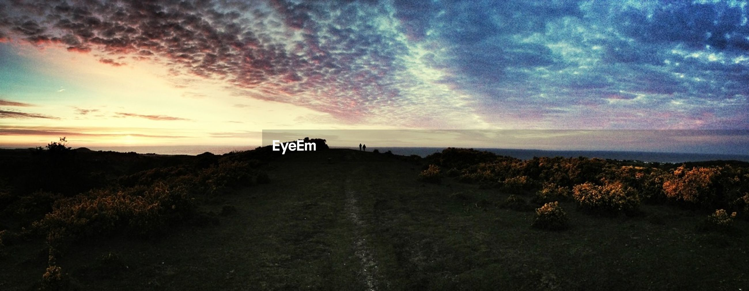 sky, cloud - sky, the way forward, tranquil scene, tranquility, landscape, scenics, sunset, cloudy, beauty in nature, nature, dirt road, cloud, tree, field, road, diminishing perspective, non-urban scene, dramatic sky, plant