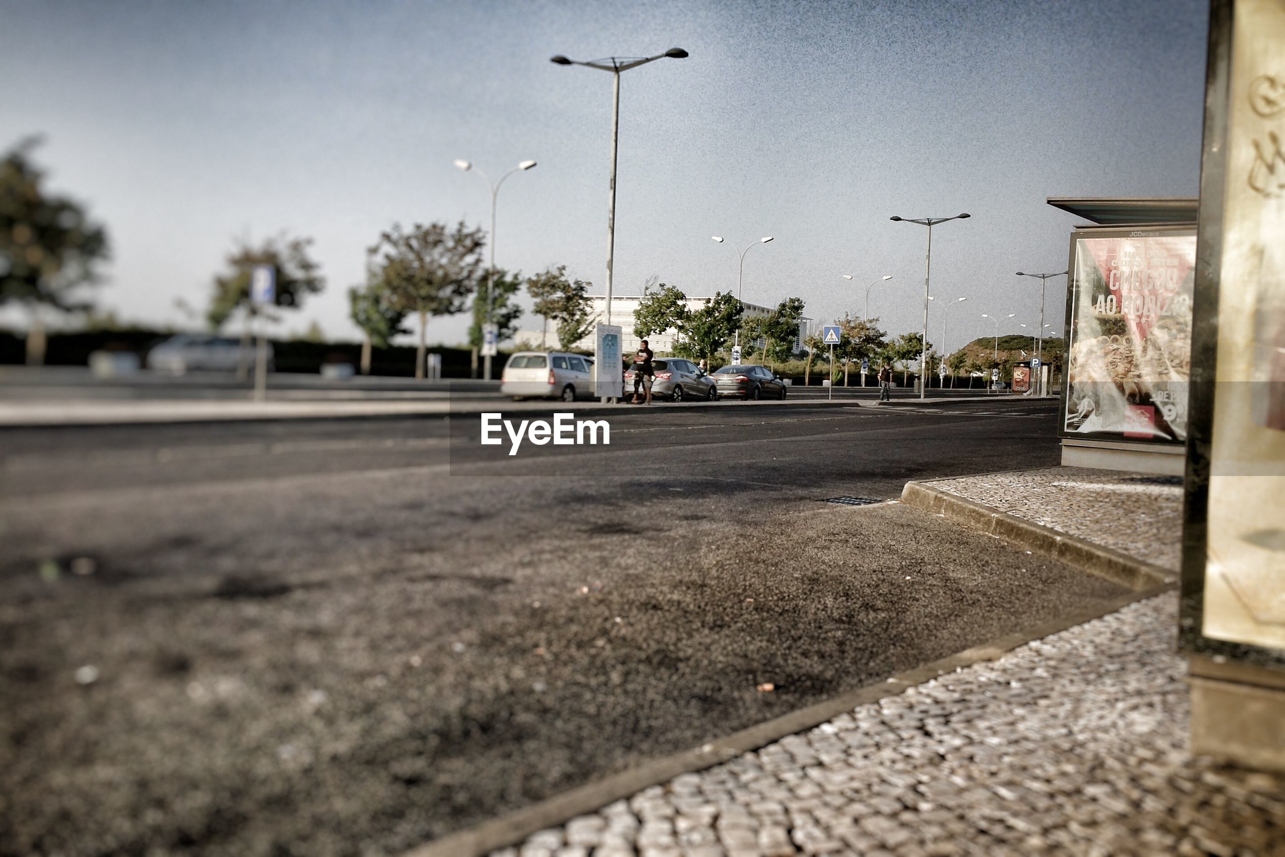 the way forward, road, transportation, tree, sky, day, built structure, outdoors, clear sky, no people, city, architecture, nature