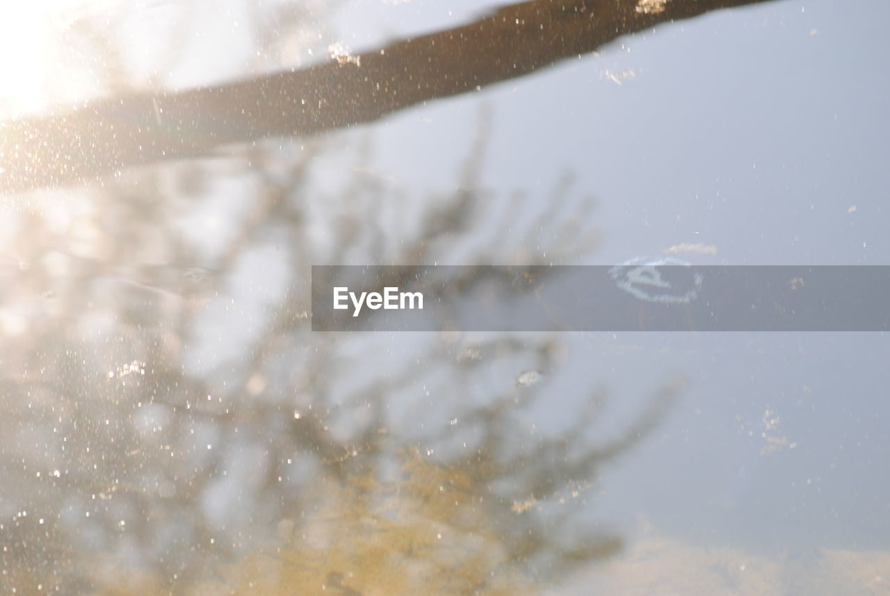 water, reflection, drop, wet, no people, nature, raindrop, day, motion, beauty in nature, close-up, outdoors, sky, freshness