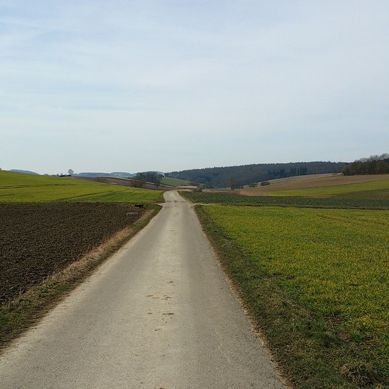 the way forward, field, day, landscape, road, no people, grass, agriculture, tranquil scene, outdoors, nature, sky, tranquility, scenics, rural scene, beauty in nature