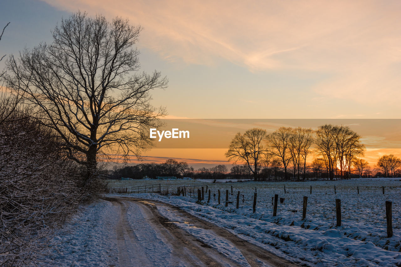 snow, cold temperature, bare tree, winter, tree, sky, sunset, scenics - nature, beauty in nature, plant, nature, no people, tranquil scene, cloud - sky, tranquility, covering, field, environment, white color