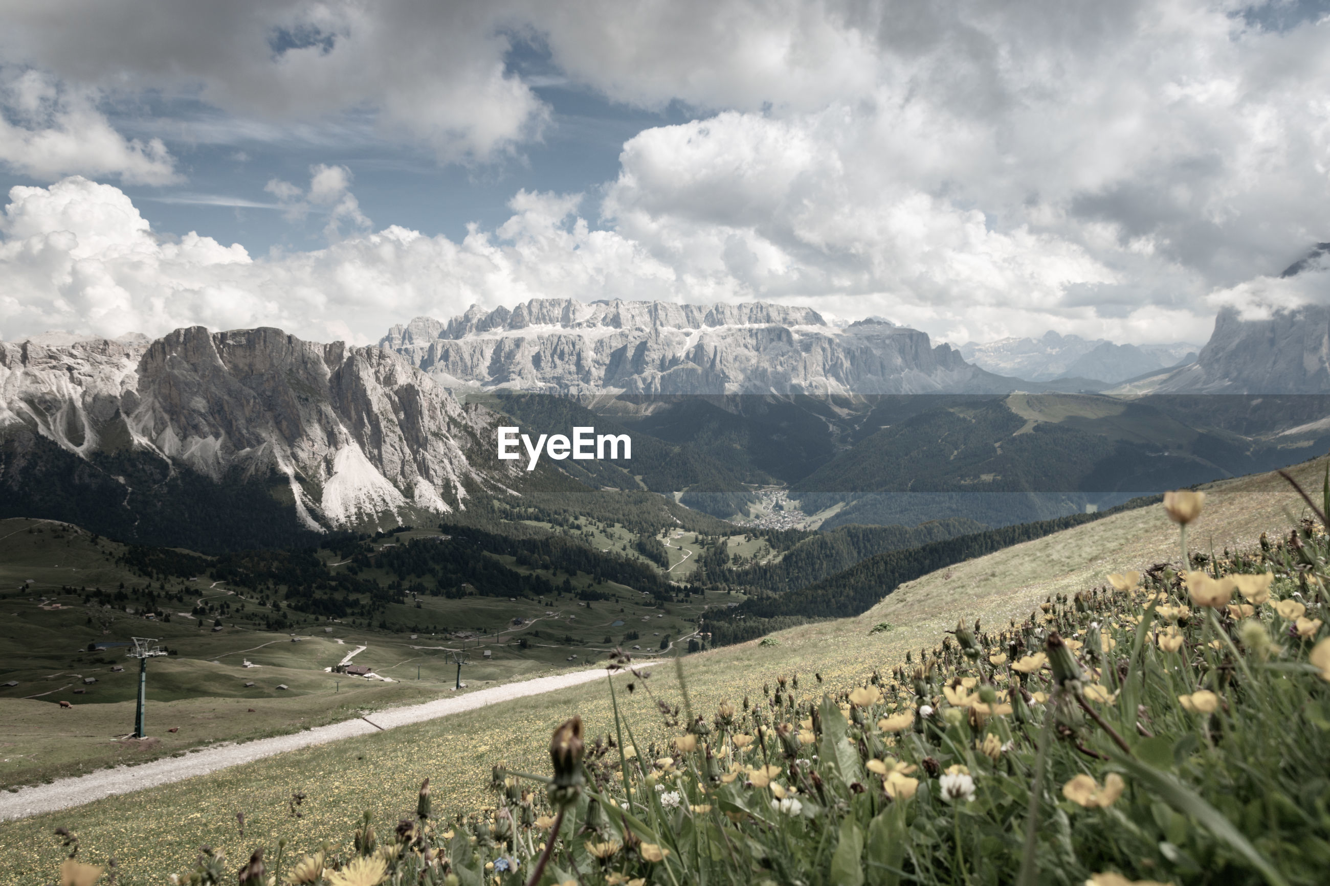 Scenic view of sella group mountains with flowers in the foreground against cloudy sky in retro styl