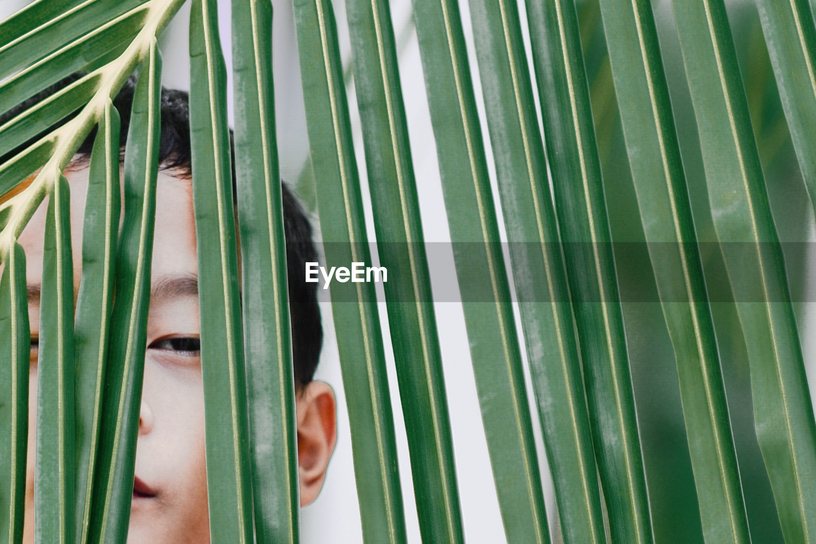 Close-up portrait of boy peeking through leaves