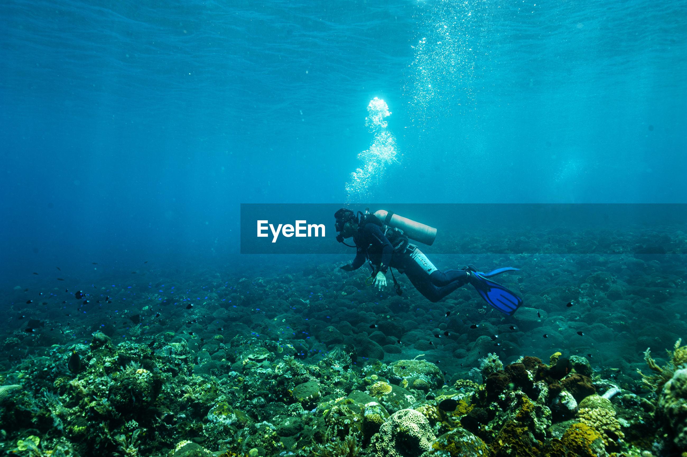 Scuba diver exploring underwater in sea