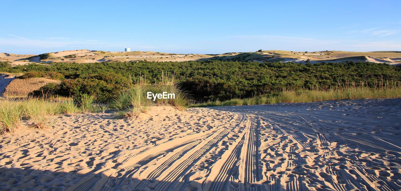 Tire tracks at sandy beach