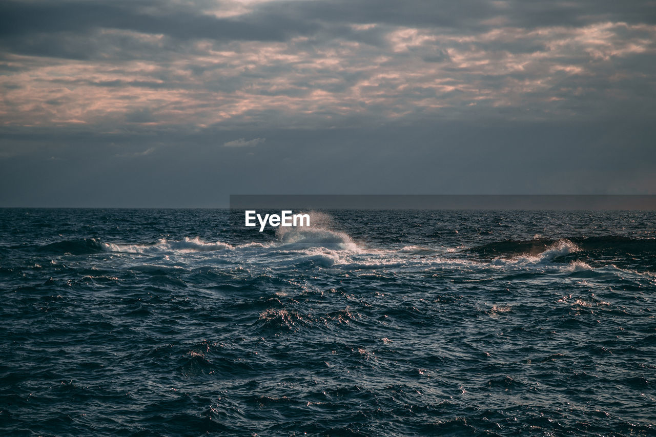 sea, sky, water, cloud - sky, waterfront, horizon over water, horizon, no people, beauty in nature, wave, motion, nature, scenics - nature, sunset, outdoors, mammal, idyllic, swimming, day, marine, power in nature