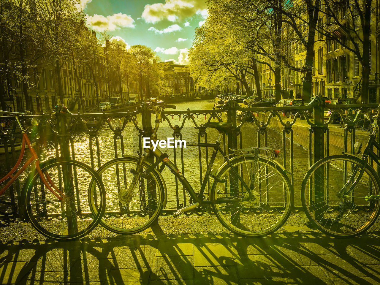 BICYCLE BY TREES IN CITY