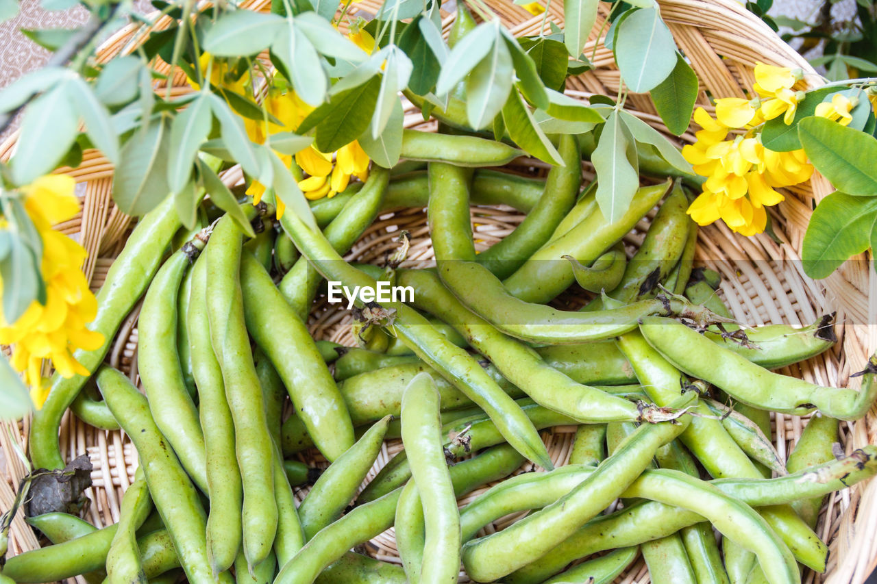 freshness, food and drink, food, green color, vegetable, large group of objects, abundance, day, market, chili pepper, spice, high angle view, close-up, for sale, no people, healthy eating, retail, wellbeing, pepper, outdoors