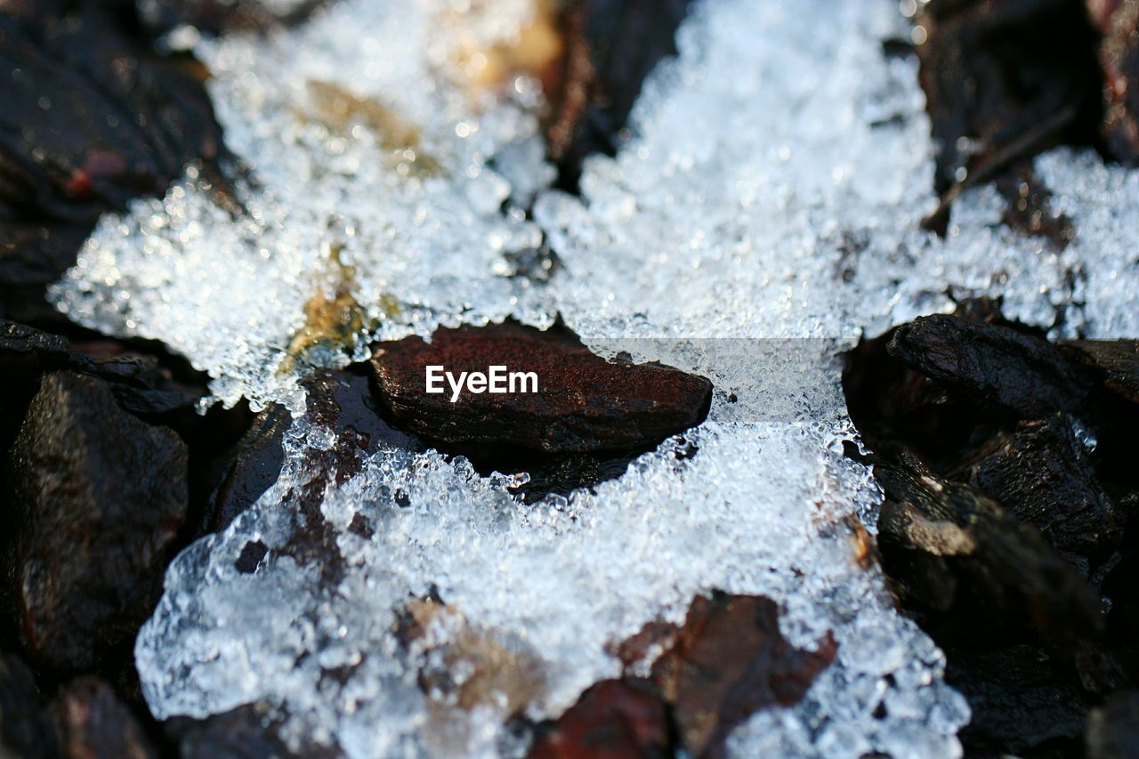 water, no people, cold temperature, day, close-up, winter, nature, outdoors, snow, dripping