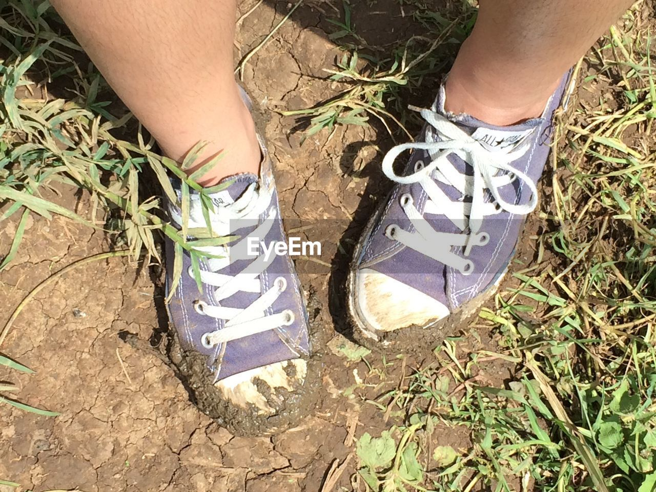 low section, real people, one person, shoe, human leg, high angle view, standing, human body part, day, outdoors, lifestyles, men, grass, nature, close-up, people